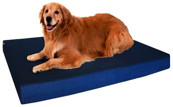 DogBed4Less Memory Foam Bed for Arthritis Review
