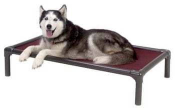 Kuranda Chewproof Raised Dog Bed Review