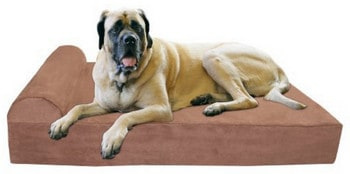 Big Barker Orthopedic Large Bed for Dogs Review