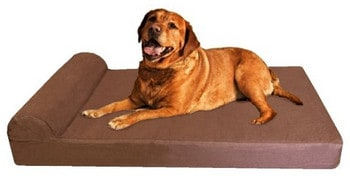Dogbed4less Memory Foam Large Bed Review