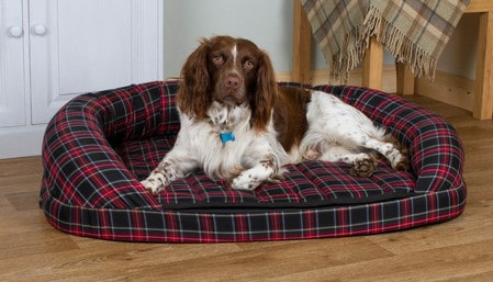 Dog Bed Benefits