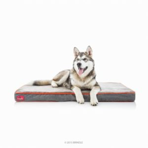 Brindle Chew Proof Indestructible Dog Bed Review