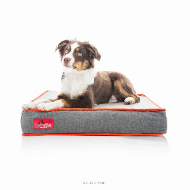 Brindle Tear Resistant Non Chewable Dog Bed