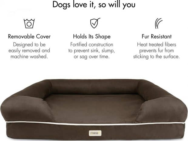 cute small dog beds