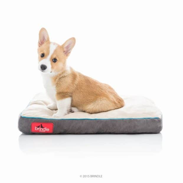 BRINDLE Dog Bed Soft Memory Foam Review
