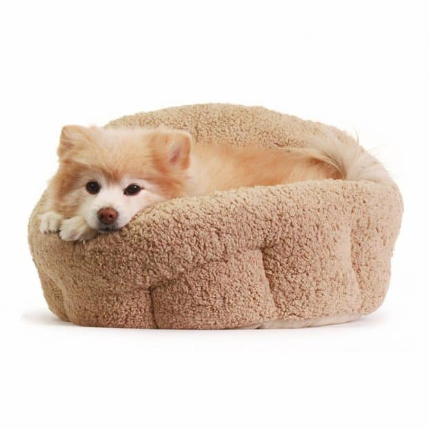 Best Friends Comfort Dish Dog Bed