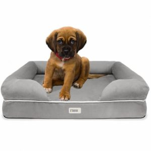Friends Forever Orthopedic Dog Bed Premium Best Dog Beds For Small Dogs
