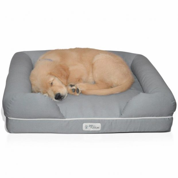 Pet Fusion Dog Bed Cleaning Memory Foam