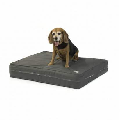 """eLuxurySupply Orthopedic Dog Bed - 5"""" Thick"""