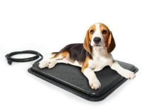Milliard-Indoor-Outdoor Heated-Pet-Pad