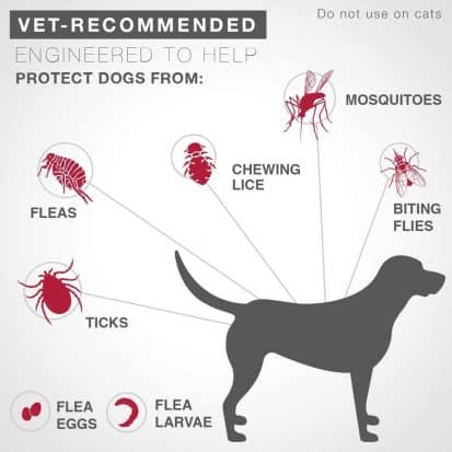 Top 5 Best Dog Flea And Tick Control Reviews 2018 Dog