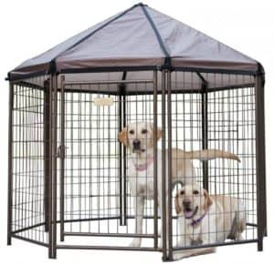 Advantek Pet Gazebo Modular Outdoor Dog Kennel Review