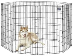MidWest Homes for Pets Foldable Metal Exercise Pen Review