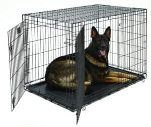 MidWest Life Stages Heavy-Duty Folding Metal Dog Crates Review