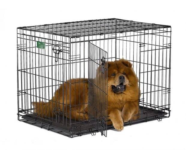 MidWest iCrate Single Door & Double Door Folding Metal Dog Crates Review