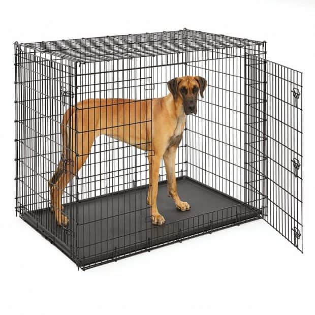 "Midwest Solution Series ""Ginormus"" Double Door Dog Crate Review"