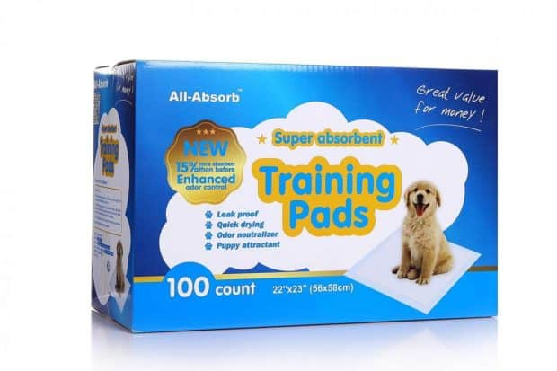 All Absorb Training Pads