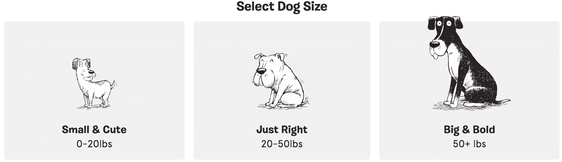 bark box dog size