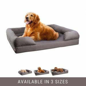 Top 5 Best Dog Sofas and Chairs 2019 Reviews & Buyer\'s Guide