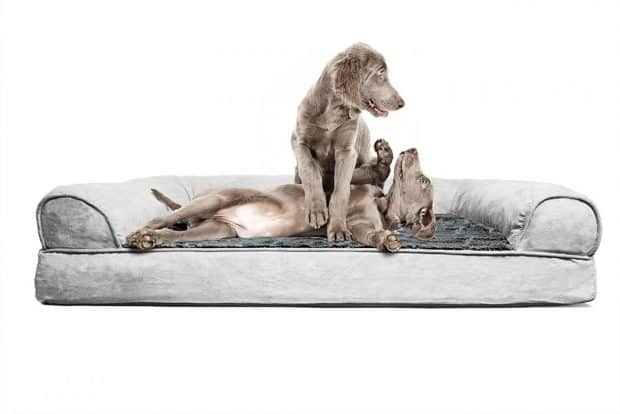 FurHaven Orthopedic Dog Couch