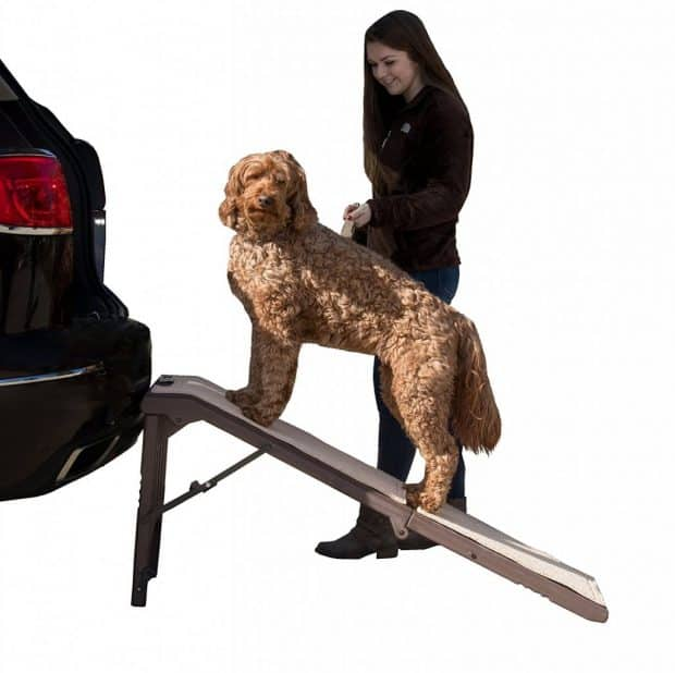 Pet Gear Free Standing Dog Ramp Review