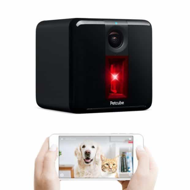 PetCube Play Pet Camera