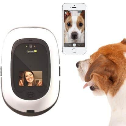 PetChatz Pet Camera & Treat Dispenser