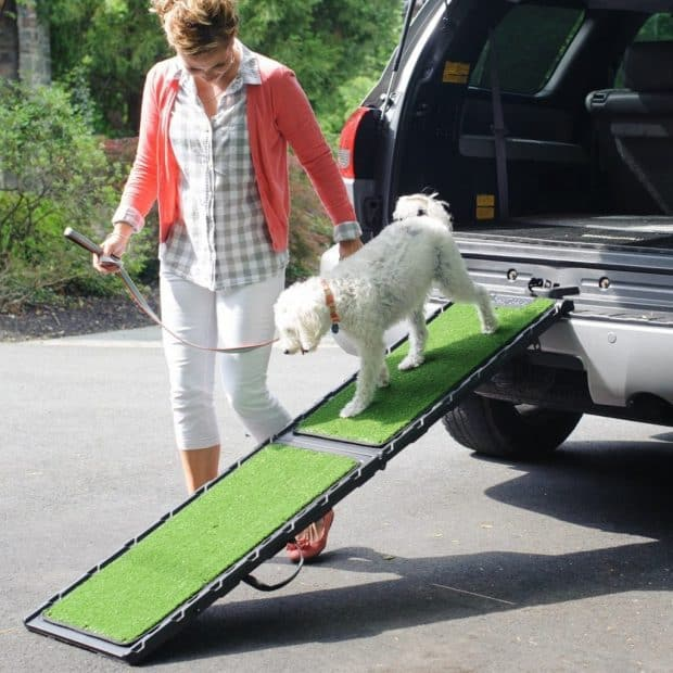 Gen7Pets Natural-Step Dog Ramp Review
