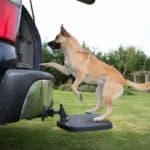 Heininger PortablePET TwiStep 3052 Dog Hitch