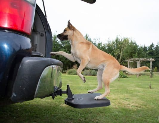Heininger PortablePET TwiStep 3052 Dog Hitch Review