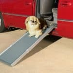 PetSafe Solvit Deluxe Telescoping Dog Ramp