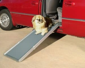 PetSafe Solvit Deluxe Telescoping Dog Ramp Review