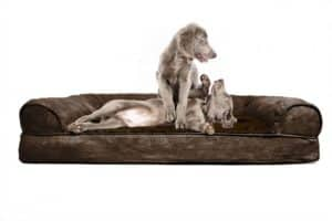 FurHaven Orthopedic Dog Couch Jumbo