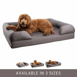 Petlo Orthopedic Pet Sofa Bed Review