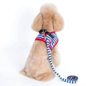 Alfie Couture Designer Pet Accessory