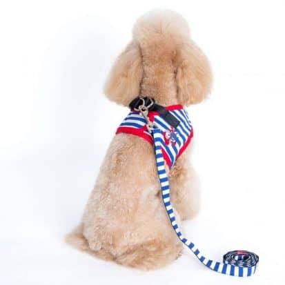 Alfie Couture Designer Pet Accessory