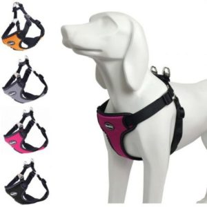 BINGPET Reflective No-Pull Harness