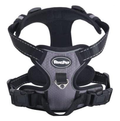 EXPAWLORER Best No-Pull Dog Harness