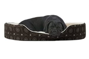 Furhaven Pet NAP Dual Lounger Bed
