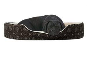 Furhaven Pet NAP Dual Lounger Bed