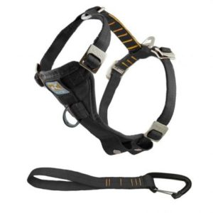 Kurgo Tru-Fit Crash-Tested Dog Harness