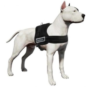 LovinPet Large Dog Harness No Pull