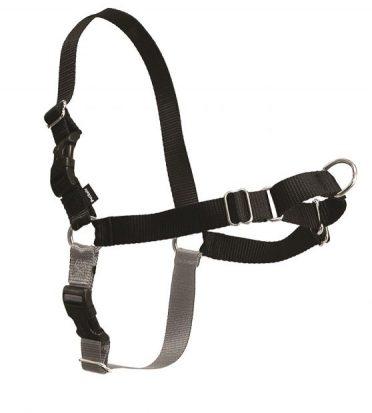 PetSafe Easy-Walk Harness
