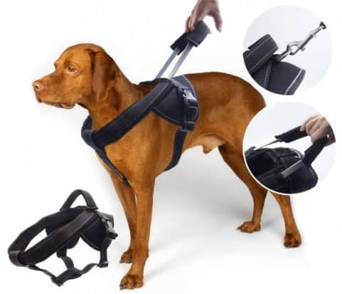 YOGADOG Dog Harness- pitbull collars and leashes