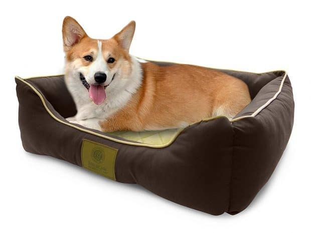 American Kennel Club Self-Heating Solid Pet Bed for Greyhounds