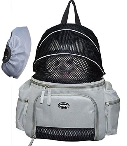 BINGPET Small Dog Pet Carrier Soft Sided Carrying Bag