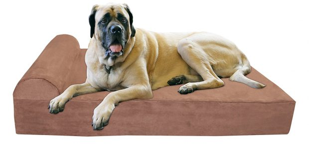 "Big Barker 7"" Orthopedic Dog Bed with Pillow-Top for Mastiffs"