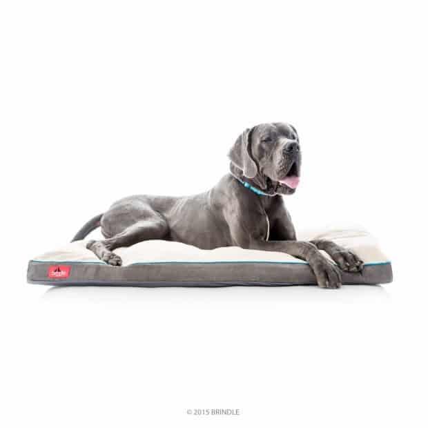 Brindle Soft Memory Foam Dog Bed Mastiffs