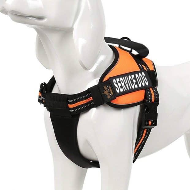 Chai's Choice Service Dog Vest Harness for Golden Retrievers