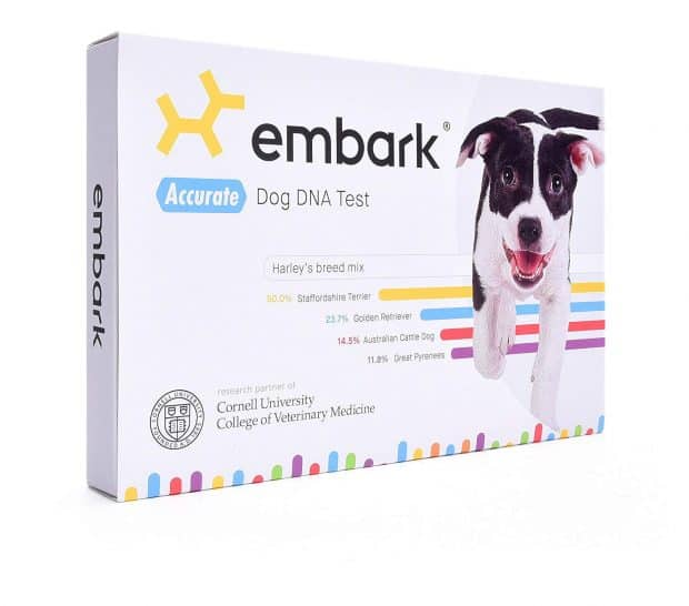 Embark Dog DNA Test Breed Identification